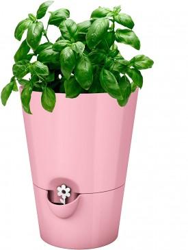 Emsa Kräutertopf für frische Kräuter, Selbstbewässerung, Wasserstandsanzeiger, Ø 13 cm, Fresh Herbs